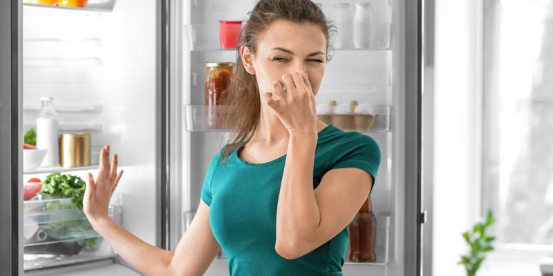 Buzdolabı bakımı